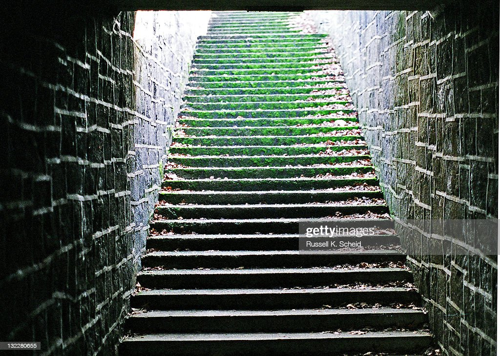 Tunnel stone stairs with moss : Stock Photo