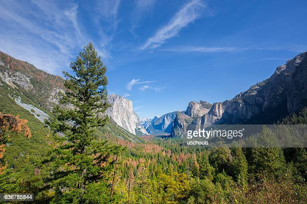 Tunnel Ausblick, Yosemite National Park