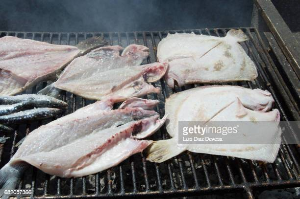 Turbot and sea bass roasting On Barbeque Grill