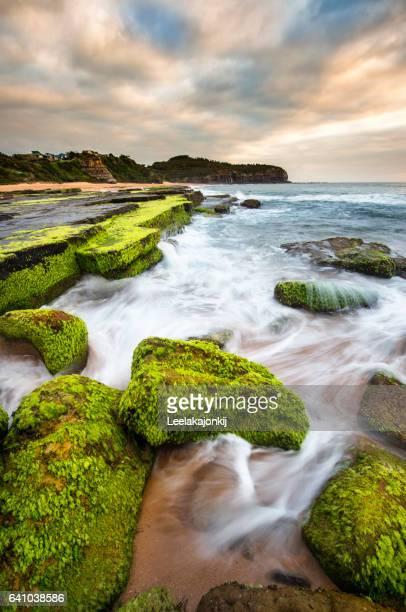 Turimetta beach in Sydney.