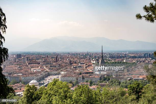 Turin skyline viewed from nearby hilltop looking through trees.