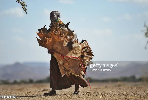 A Turkana woman carries hides skinned from goats he has lost to a biting drought that has ravaged livestock population in nothern Kenya near...