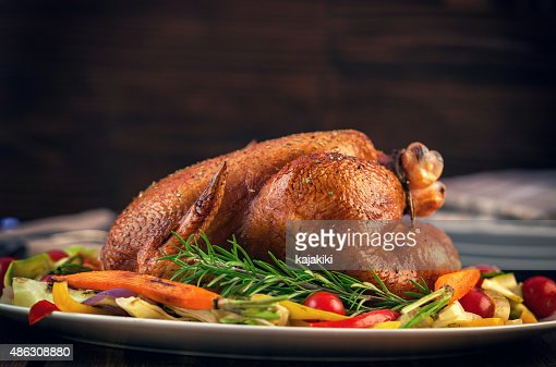 Turkey Dinner : Stock Photo