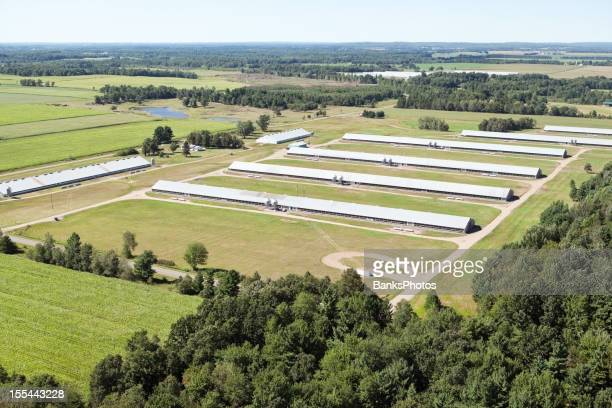 Turkey Farm Aerial