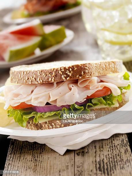 Turkey Sandwich at a Picnic