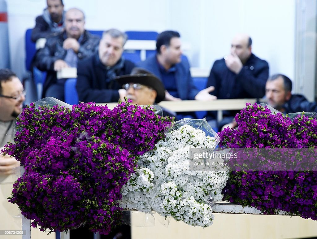 Turkish local rose and flower cultivators display their harvest to wholesale buyers ahead of Valentine's day in Izmir province of Turkey on February 6, 2016. Rose growth in Turkey meets approximately 60% of the whole demand of the world. Sellers expect rose sales to increase one million on upcoming Valentine's days.