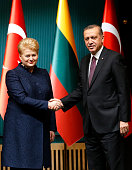 Turkish President Recep Tayyip Erdogan and Lithuanian President Dalia Grybauskaite shake hands following their joint press conference at the...