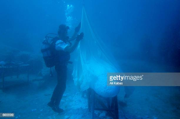 Turkish sculptor Kemal Tufan unveils the world's first underwater sculpture September 23 2000 near the southern town of Kas Turkey Tufan actually...