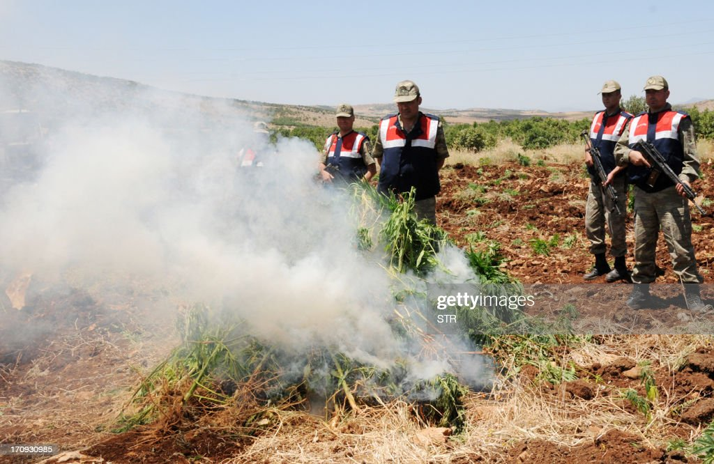 Turkish soldiers burn hashish during an operation on June 20, 2013, at Lice in Diyarbakir.
