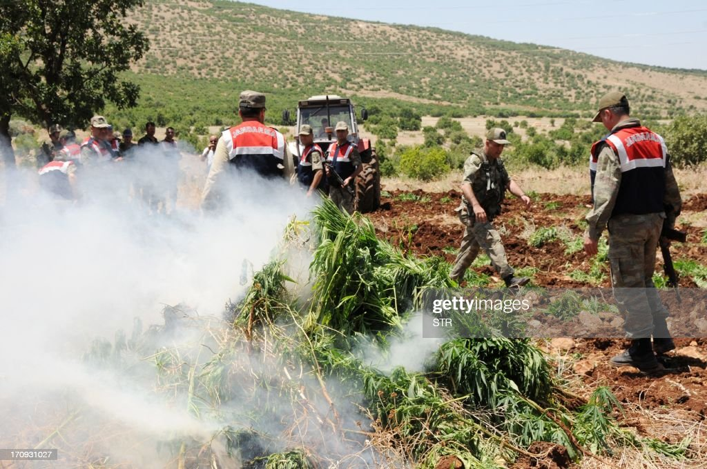Turkish soldiers burn hashish during an operation on June 20, 2013, at Lice in Diyarbakir. AFP PHOTO/STRINGER