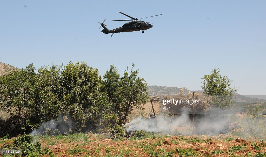 Turkish soldiers burn marijuana fields during an operation on July 8, 2013 in the Lice district of the southeastern city of Diyarbakir.
