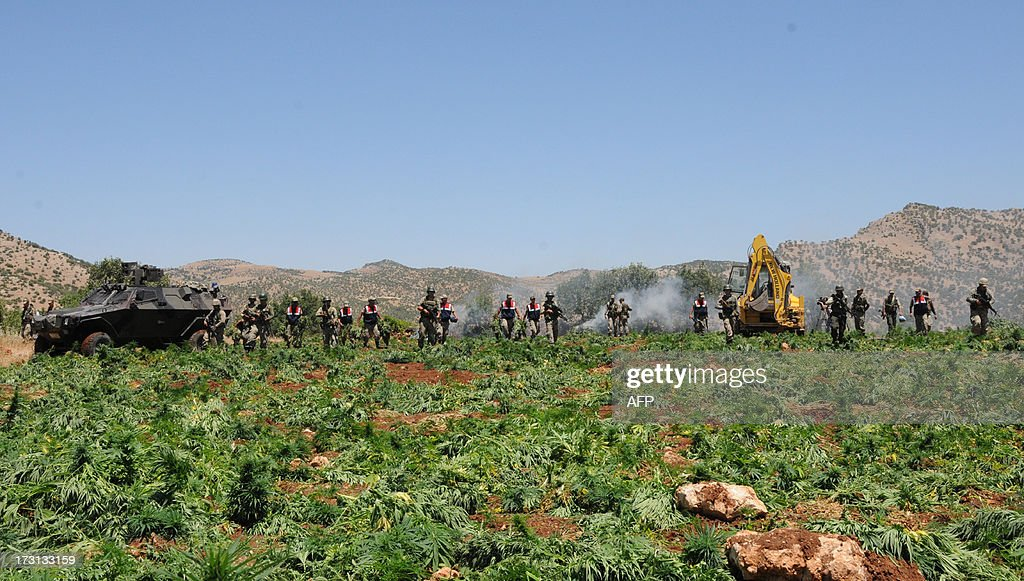 Turkish soldiers destroy a marijuana field during an operation on July 8, 2013 in the Lice district of the southeastern city of Diyarbakir.