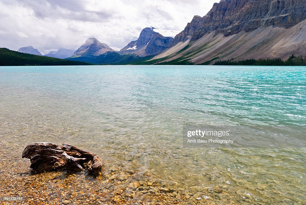 Turquoise waters. Bow Lake, Banff Park, Canada