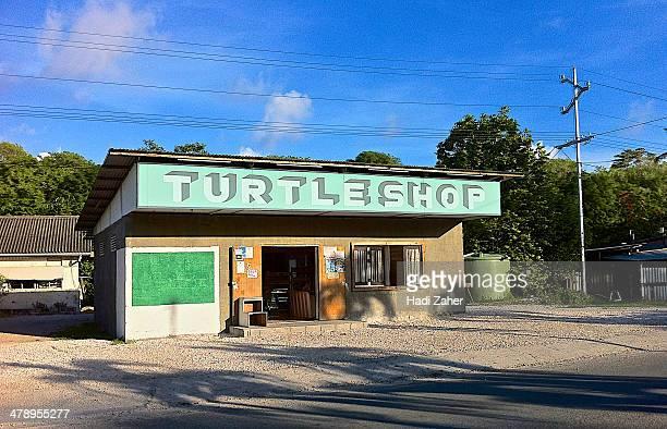 Turtle Grocery Shop | Nauru