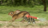 Turtle hare race with turtle wearing a jet pack and wheels. Rabbit looking back towards the turtle, worried.
