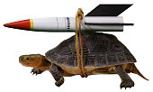 Turtle With Rocket (Clipping Paths Included)