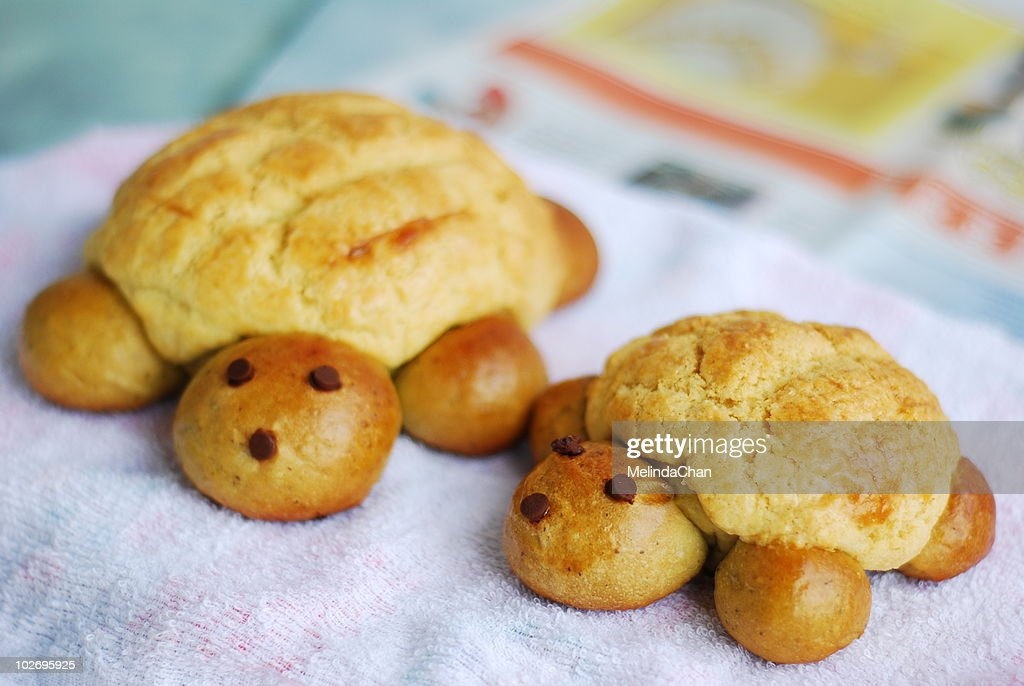 Turtles buns : Stock Photo