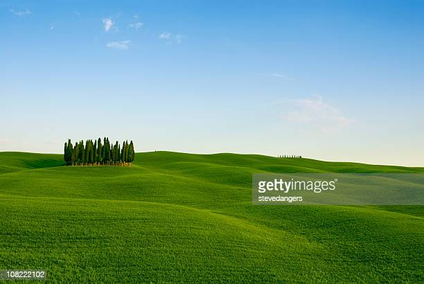 Toscana Val d'Orcia sfondo