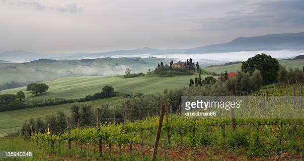 Toscana belvedere por la mañana temprano