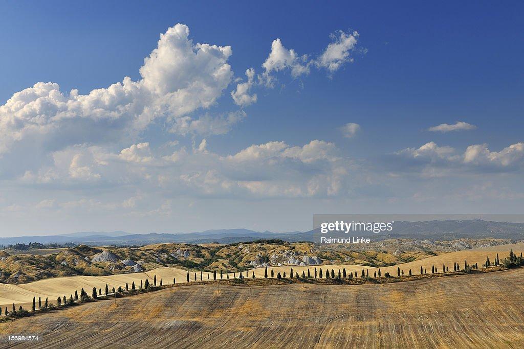 Tuscany Countryside : Stock Photo