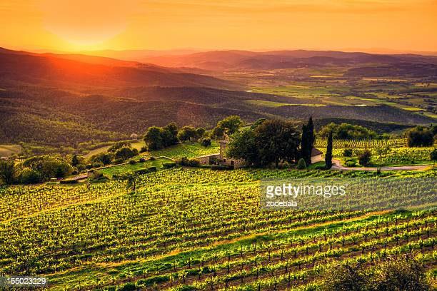 Tuscany Farmhouse and Vineyards, Chianti Region