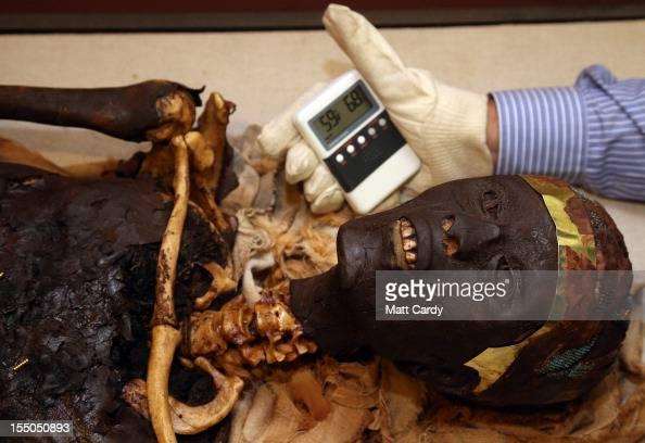Tutankhamun Exhibition manager Tim Batty uses a hydrometer to check an exact anatomical recreation of Tutankhamun's mummy on October 31 2012 in...