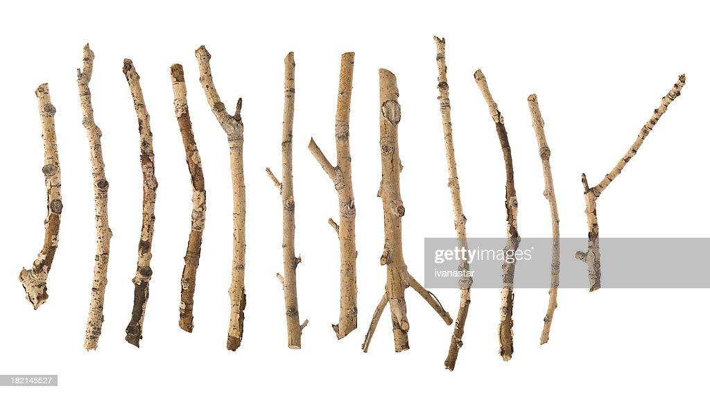 Twigs and Sticks