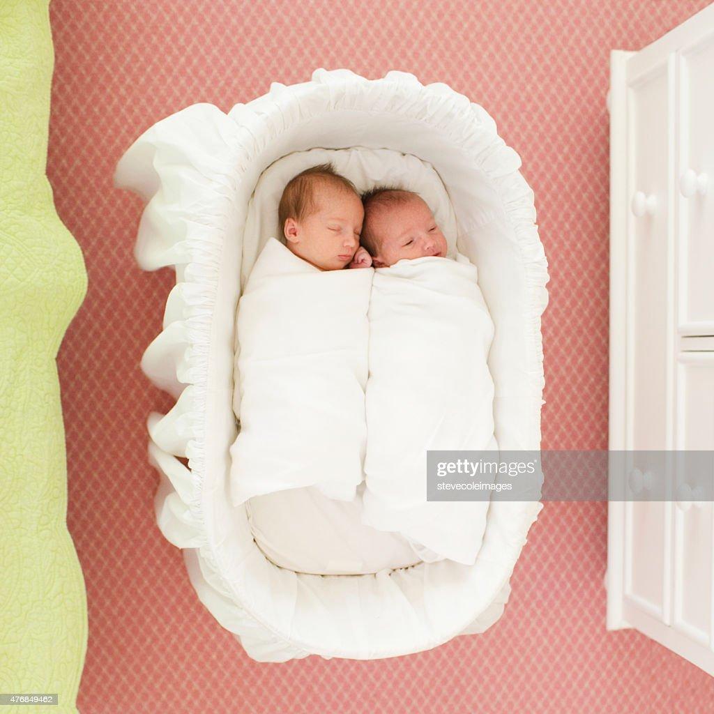 Twin Babies : Stock Photo