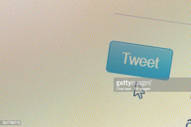 A Twitter icon as seen on a laptop screen PRESS ASSOCIATION Photo Picture date Tuesday December 10 2013 Photo credit should read Chris Ison/PA Wire
