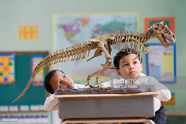 Two African American boys studying t-rex fossil