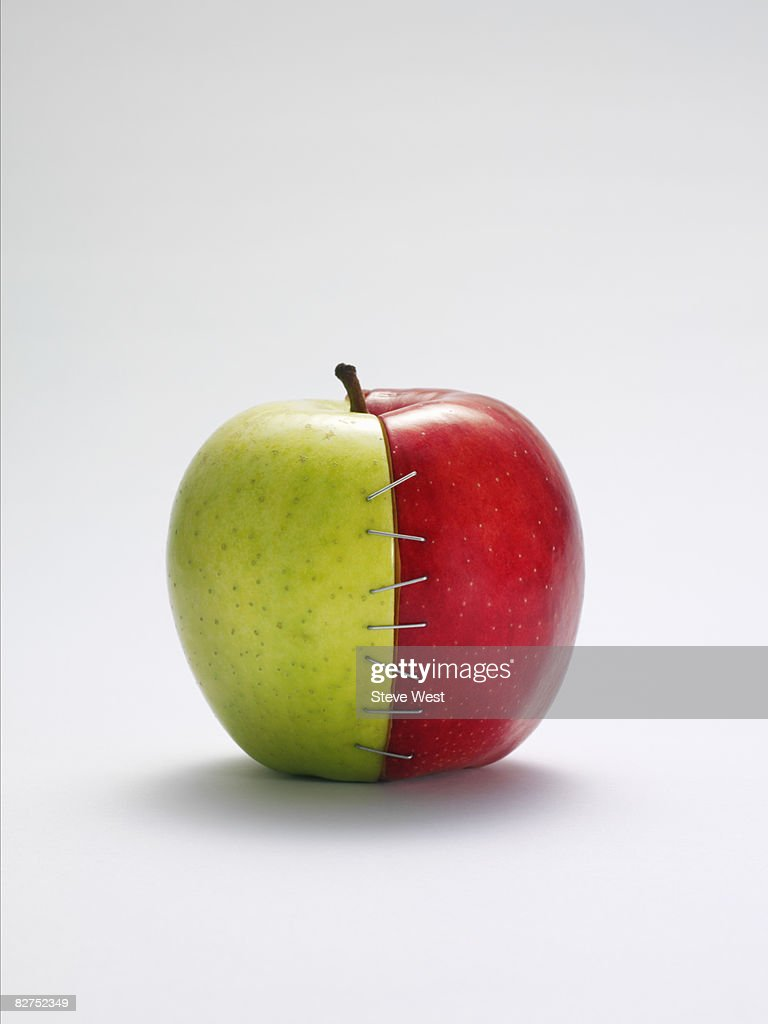 Two apple halves joined together with staples