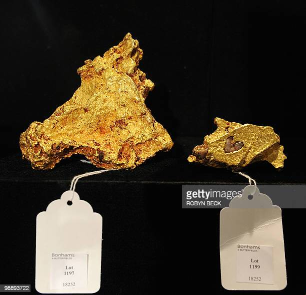 Two Australian gold nuggets are on display before sale at auction May 6 2010 in Los Angeles Bonhams Butterfields' upcoming National History Auction...