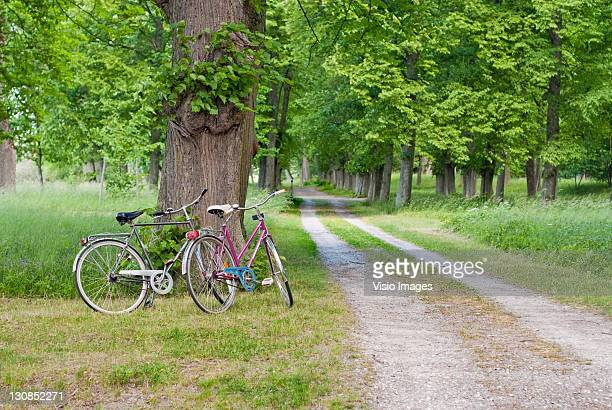 Two bicycles parked by a gravel road, Sweden, Europe