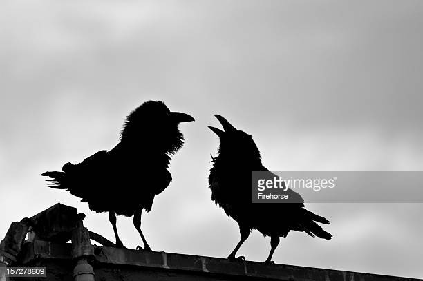 Two black crows on a roof