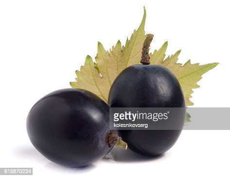 two blue grapes with leaf isolated on white background : Stock Photo