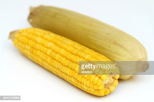 two boiled corn cob with yellow leaves : Stock Photo