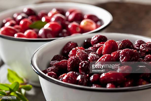 Two bowls of dried and fresh cranberries (Vaccinium macrocarpon), close-up