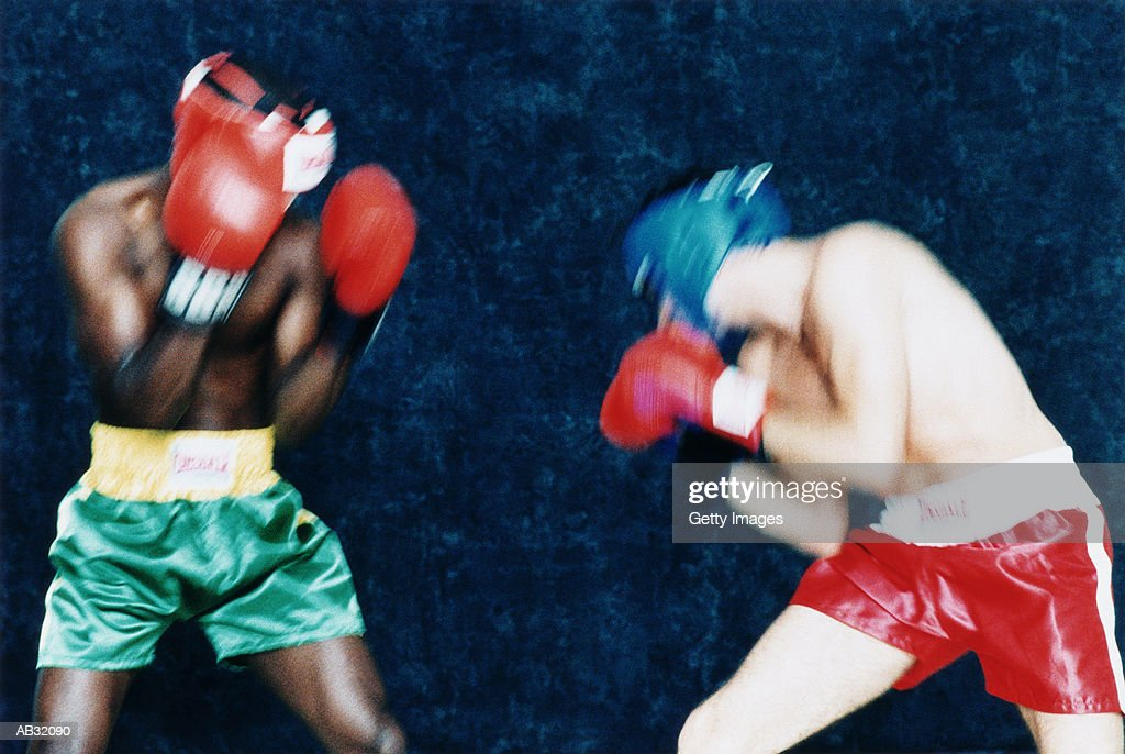 Two boxers fighting : Stock Photo