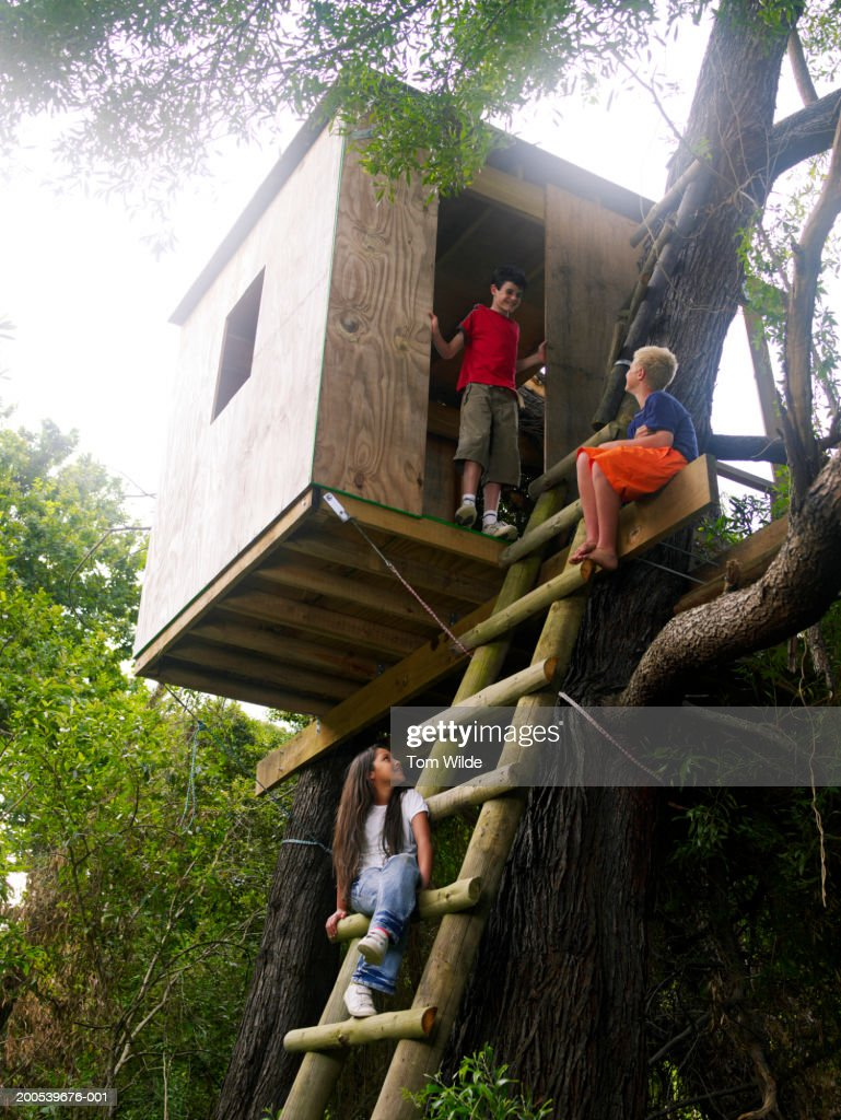 Two boys and girl (11-13) playing in tree house, low angle view : Stock Photo