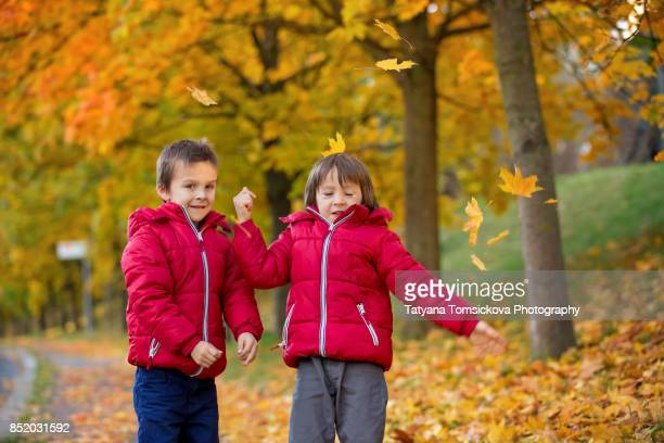 Two boys, brothers, playing in autumn alley in the park, gathering leaves, enjoying the sunny day. Children happiness concept