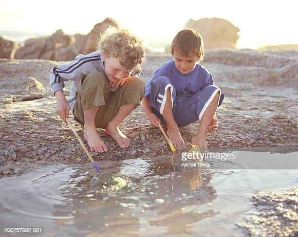 Two boys (6-8) crouching by rock pool holding fishing nets, smiling