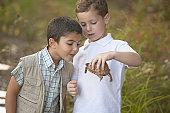 Two boys examining turtle