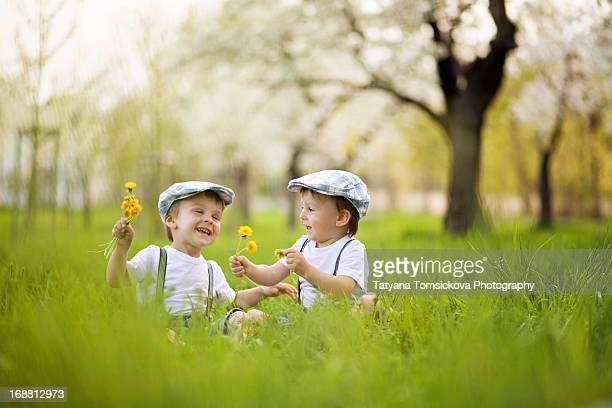 Two boys in an apple garden