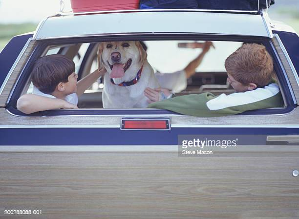 Two boys (6-9) in back of station wagon stroking dog