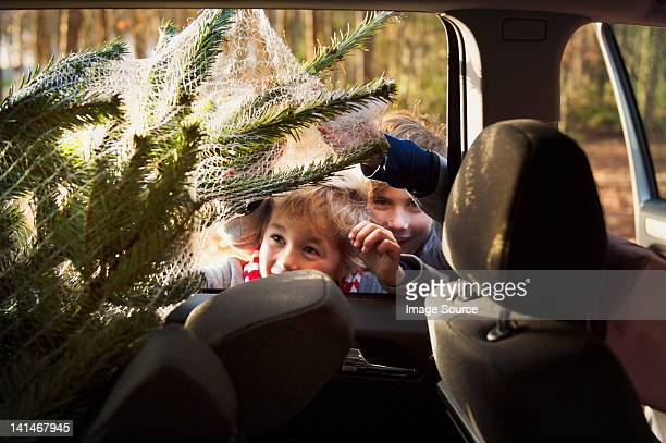 Two boys looking at Christmas tree in car