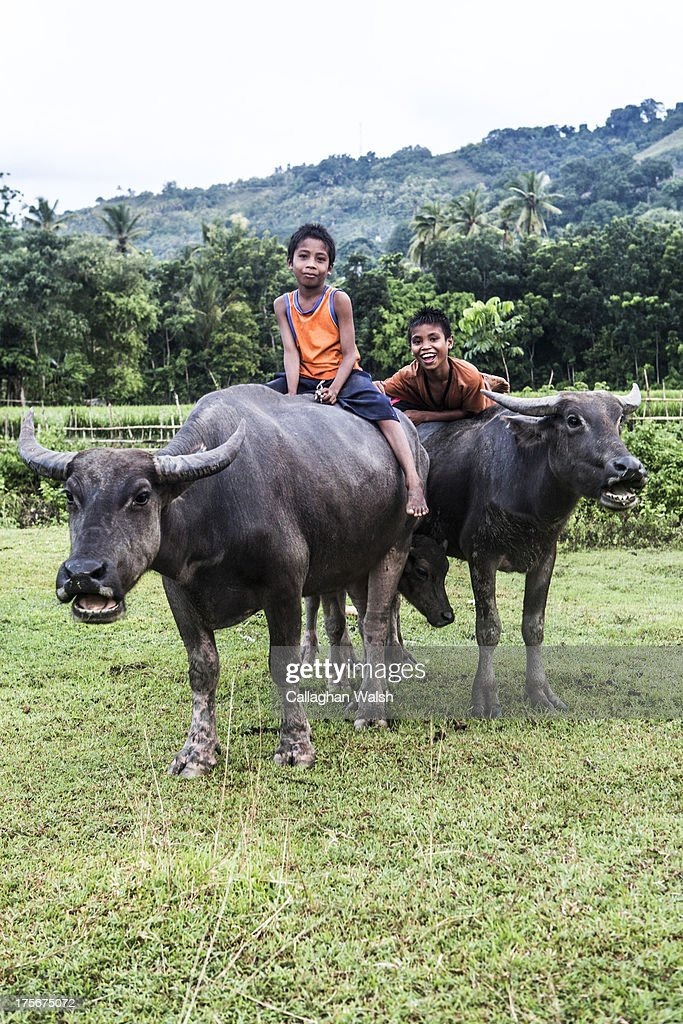 Two boys ride buffalo near a local village in Western Sumba on April 12, 2013. Sumba is a remote island in Eastern Indonesia, part of the Lesser Sunda Islands group based in the province of East Nusa Tenggara.