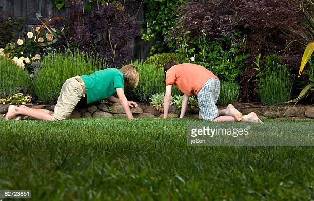 Two boys searching in yard