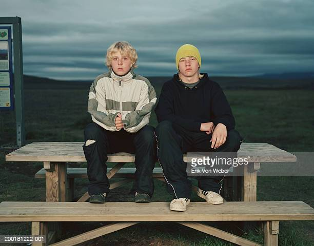 Two boys (12-15) sitting on picnic table, portrait