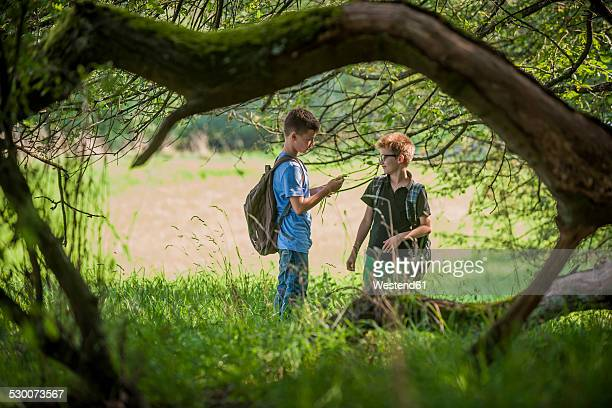 Two boys spending their time in nature
