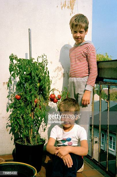 Two boys standing on balcony next to tomato plant